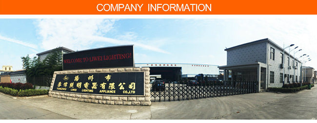Professional Factory Supply 10 Meters LED Street Light Pole