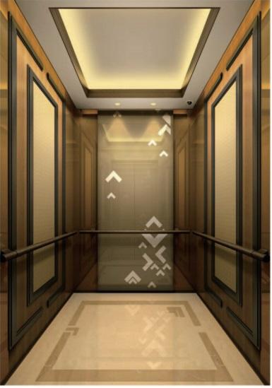 Passenger Elevator Lift Home Elevator Lift Hl-X-021