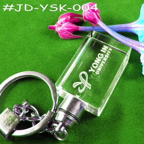 Popular Crystal 3D LED Keychain (JD-YSK)