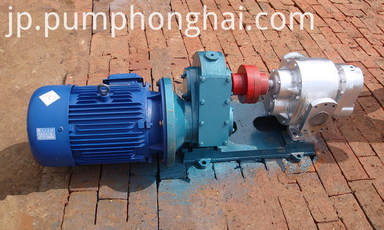 gearmotor drive type pumps