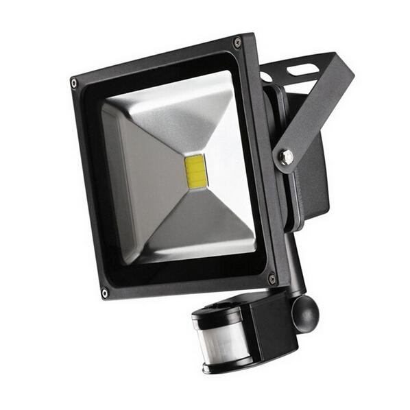 20W IP65 85-265V IR Controller PIR LED Floodlight