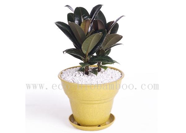 Biodegradable Natural Bamboo Fiber Flower Pot (BC-F1001)