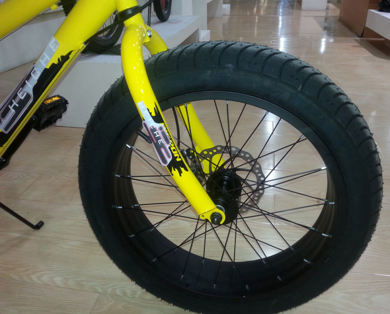 Rear 6 Speed Youngster Mountain Bike 20