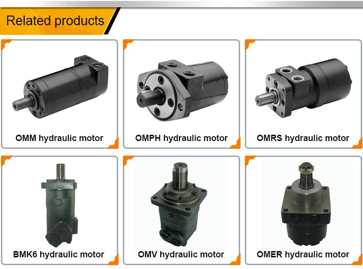 BMS80cc, BMS100cc, BMS125cc, BMS160cc, BMS200cc, BMS250cc, BMS315cc, BMS375cc Orbital Hydraulic Motor