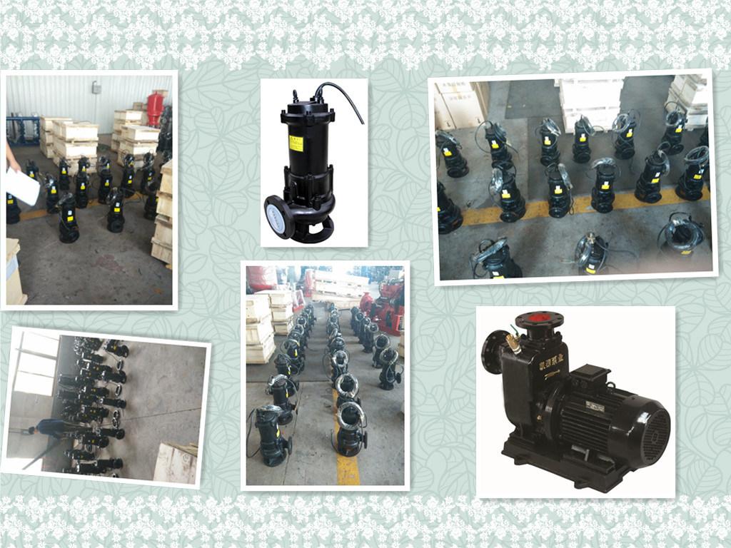 Vortex Submersible Grey Sewage Water Septic Tank Water Pump