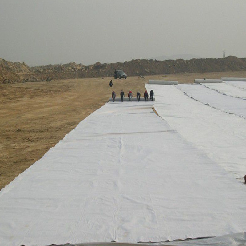 Double Layer Geotextile Single Layer Geomembrane Compound Geomembrane