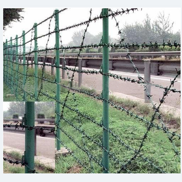 PVC Coated Barbed Wire with Factory Price in Guangzhou