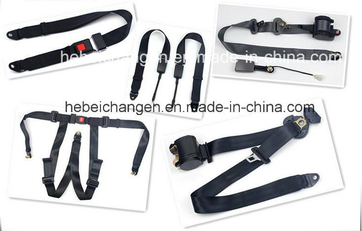 Cheap Price 3 Point Safety Belt for Sale