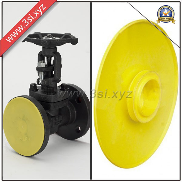 ASTM Plastic Valve Used Flange Covers (YZF-H118)