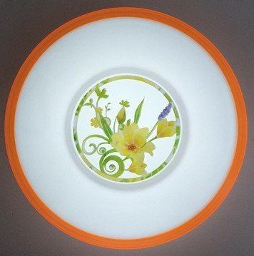 Wall Lamp Use in LED Light (Yt-212)