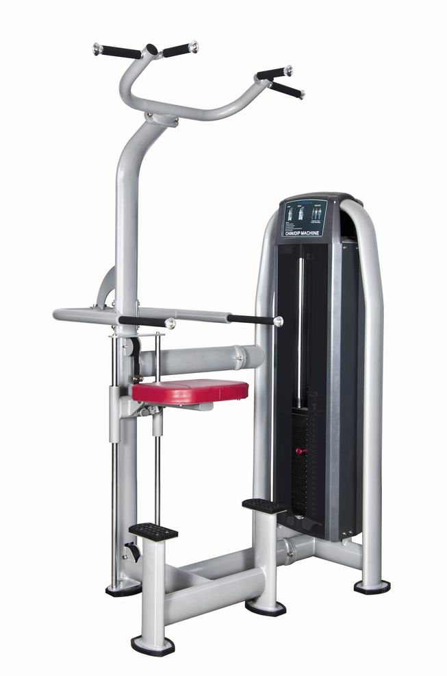 DIP & Chin Assist Commercial Fitness/Gym Equipment with SGS/CE