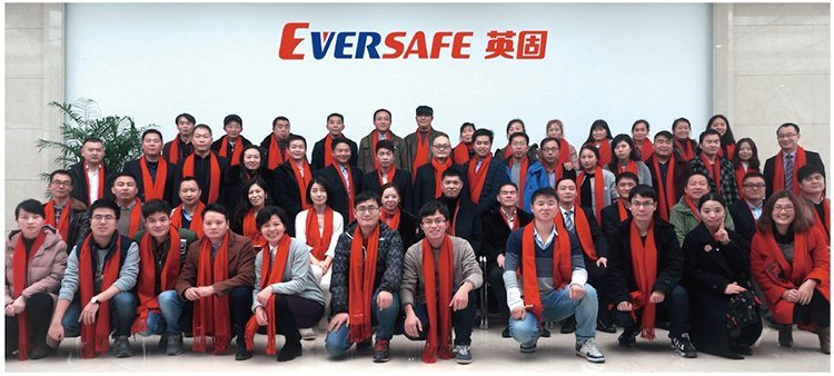 Eversafe Tyre Sealant Liquid Anti Flat From China