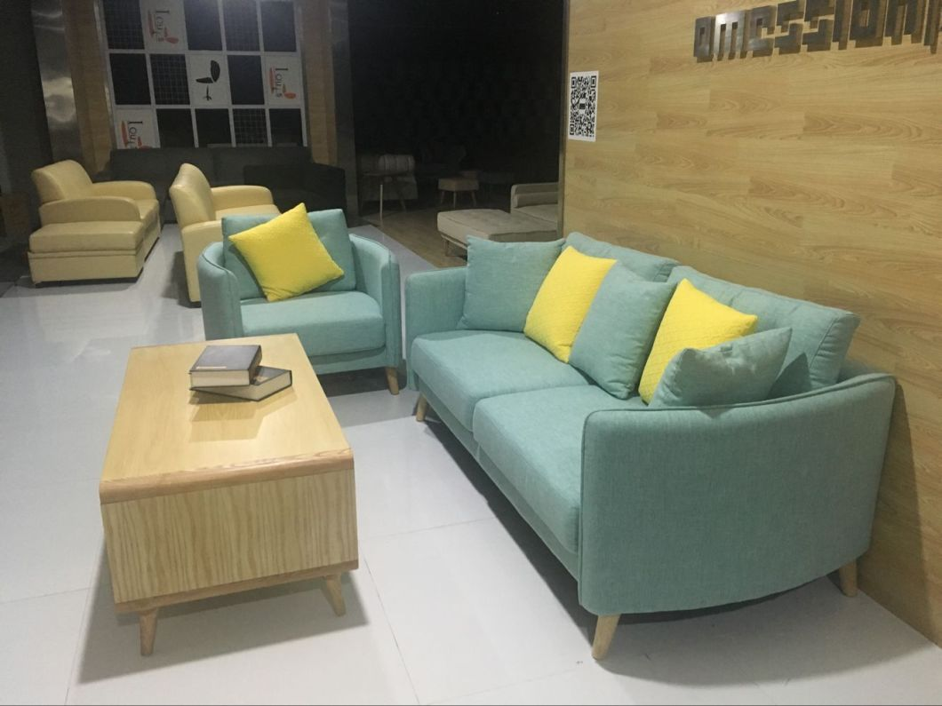 Leisure Sofa, Sofa, 2017 New Sofa, Modern Design Sofa