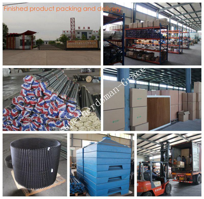 Automatic Poultry Equipment for Parent Broiler Management