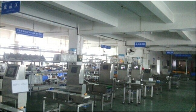 Heavy Duty Packages Online Weight Checking Machine Automatic Weighing Sysetm Weight Checker