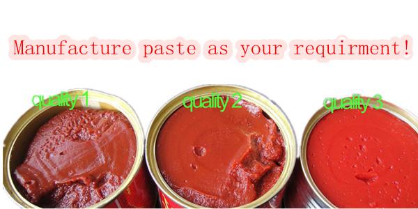 Organic 70g Sachet Tomato Paste with High Quality Tmt Brand