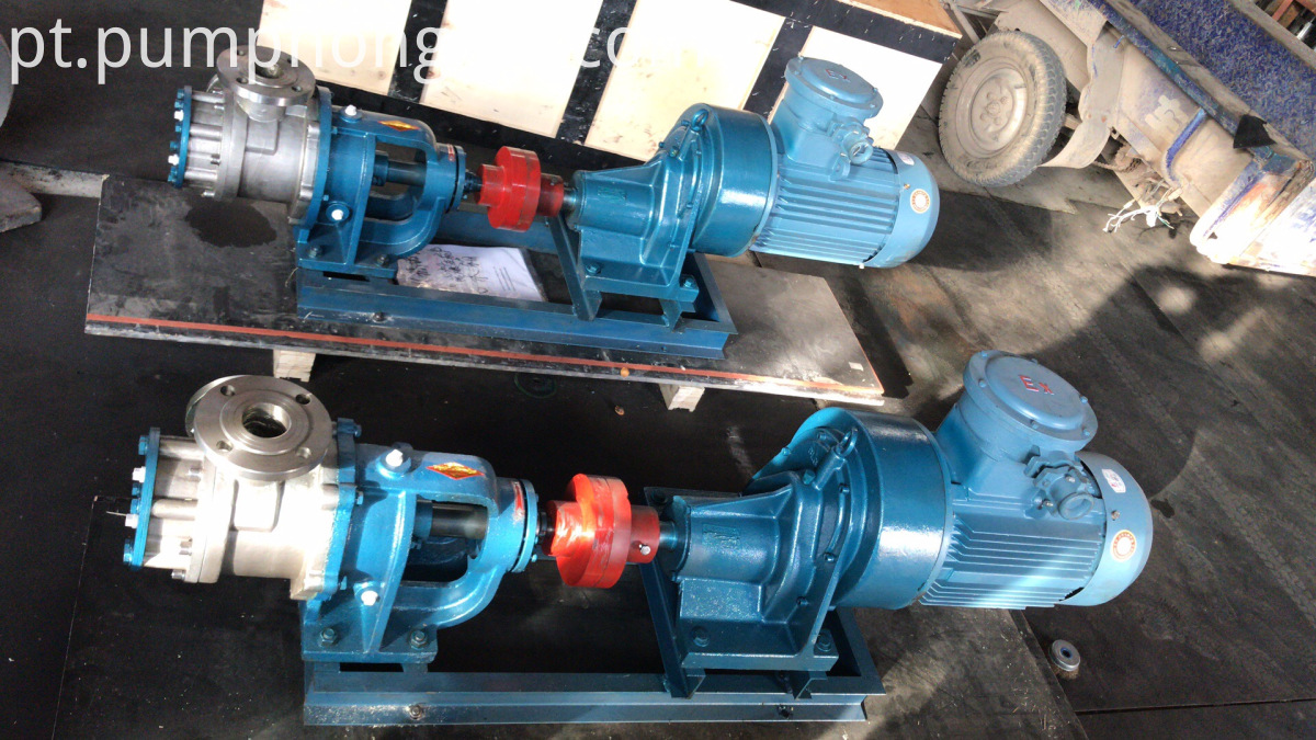 Stainless steel NYP series pump