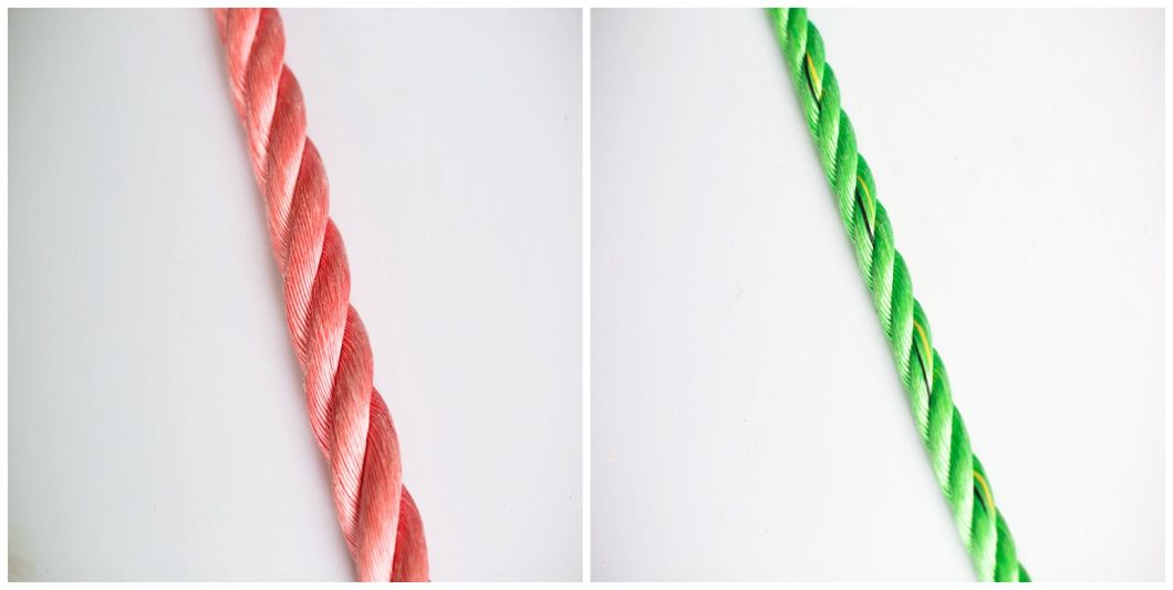 High Quality 3/4 Strand Polypropylene PP/PE Twist Danline Nylon Polyamide Marine Rope for Fishing