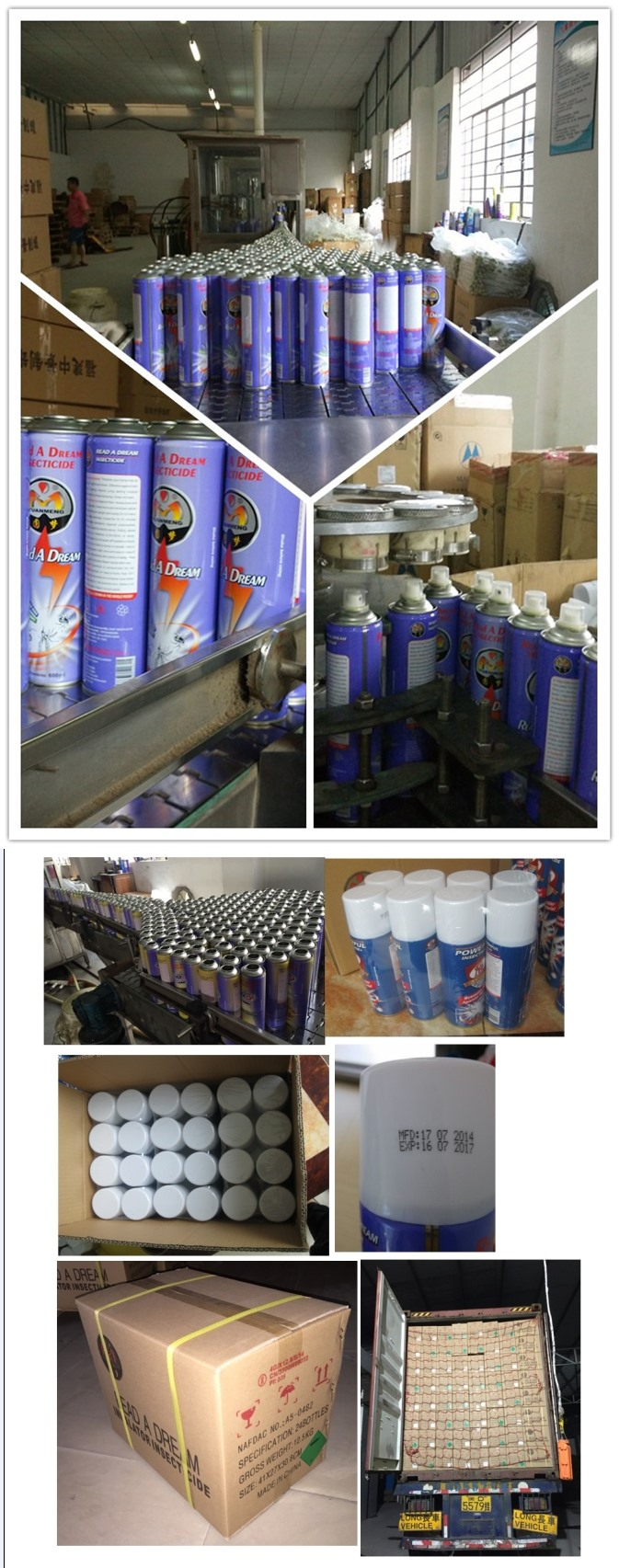 400ml China Supplier Rad Read a Dream Insecticide Spray Pest Control Spray