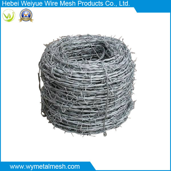 Electro Galvanized Double Line Barbed Wire