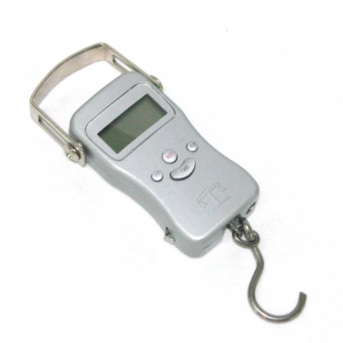 Plastic Scale Fishing Scale