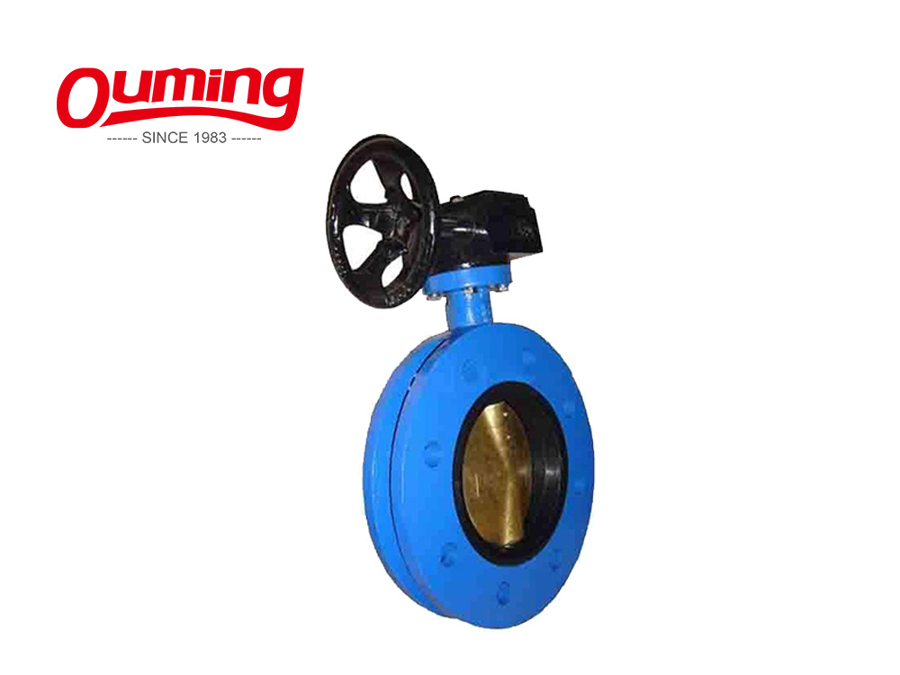 SS316L Stainless Steel Clamped Direct Way Butterfly Valve