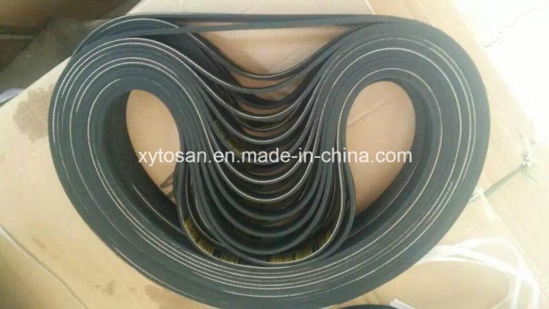 Poly-Ribbed Belt-Pk Belt