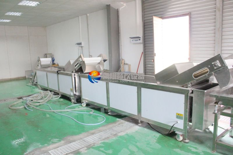 Manufacturer Vegetable and Fruits Washing Machine