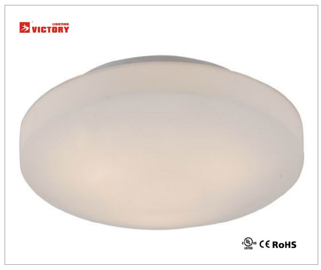 Round Ceiling Lamp Modern Simple LED Light for Living Room