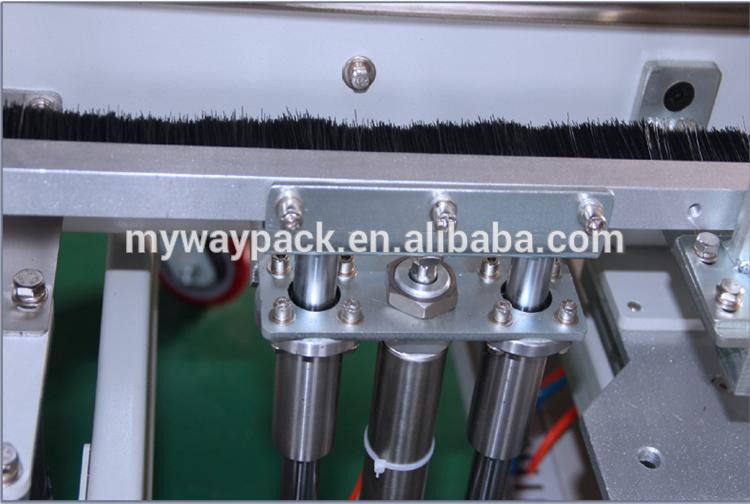 Carton erecting packing machine