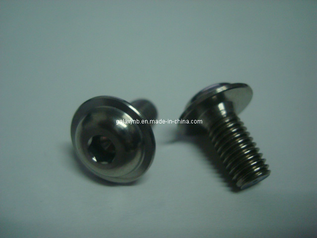 Titanium Hex Socket Head Cap Bolts