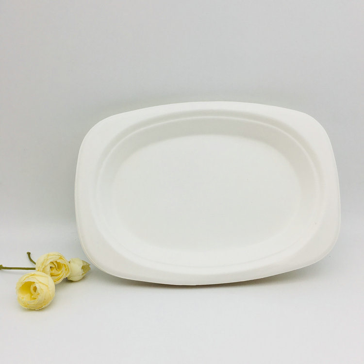 Compostable Disposable Biodegradable Paper Plate for Wedding