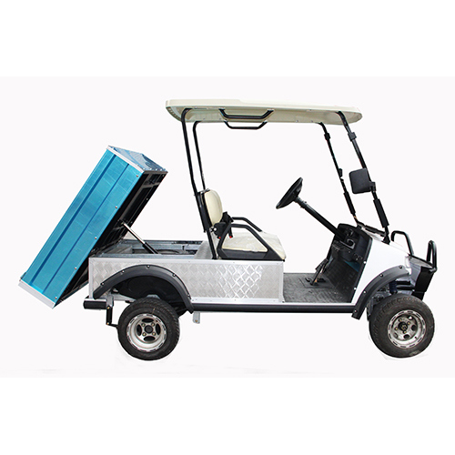 Electric Utility Cart with Mini Cargo Truck (DEL2023DUB, 2-Seater)