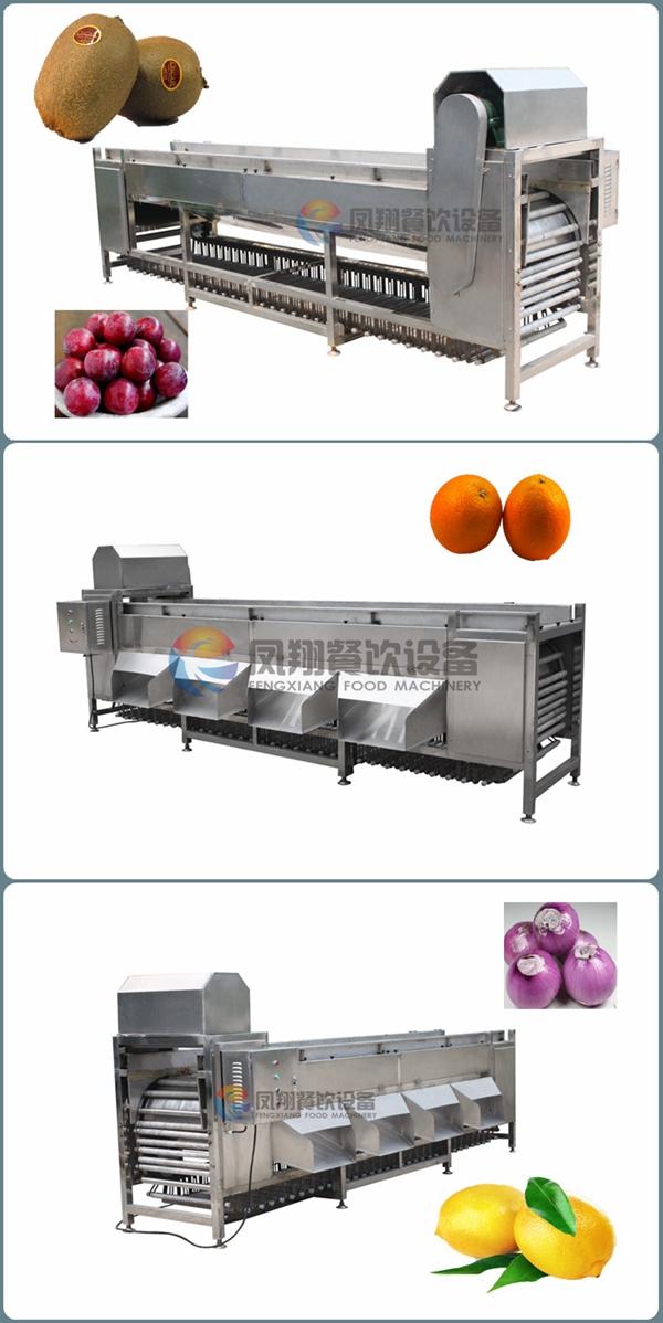 4 Levels Automatic Potato Tomato Walnut Sorting and Grading Machine