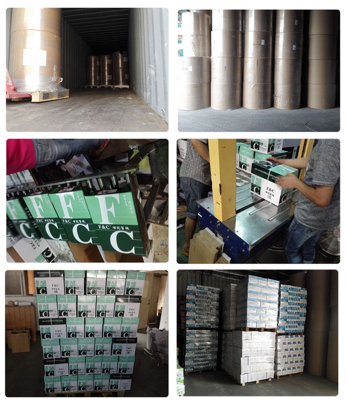 Wood Pulp Good Quality NCR Paper Sheets for Office Printing