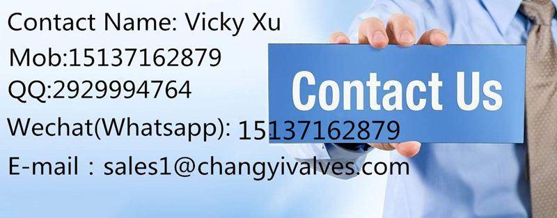 Class150-600 Wc6 Wc9 Vapour Valve
