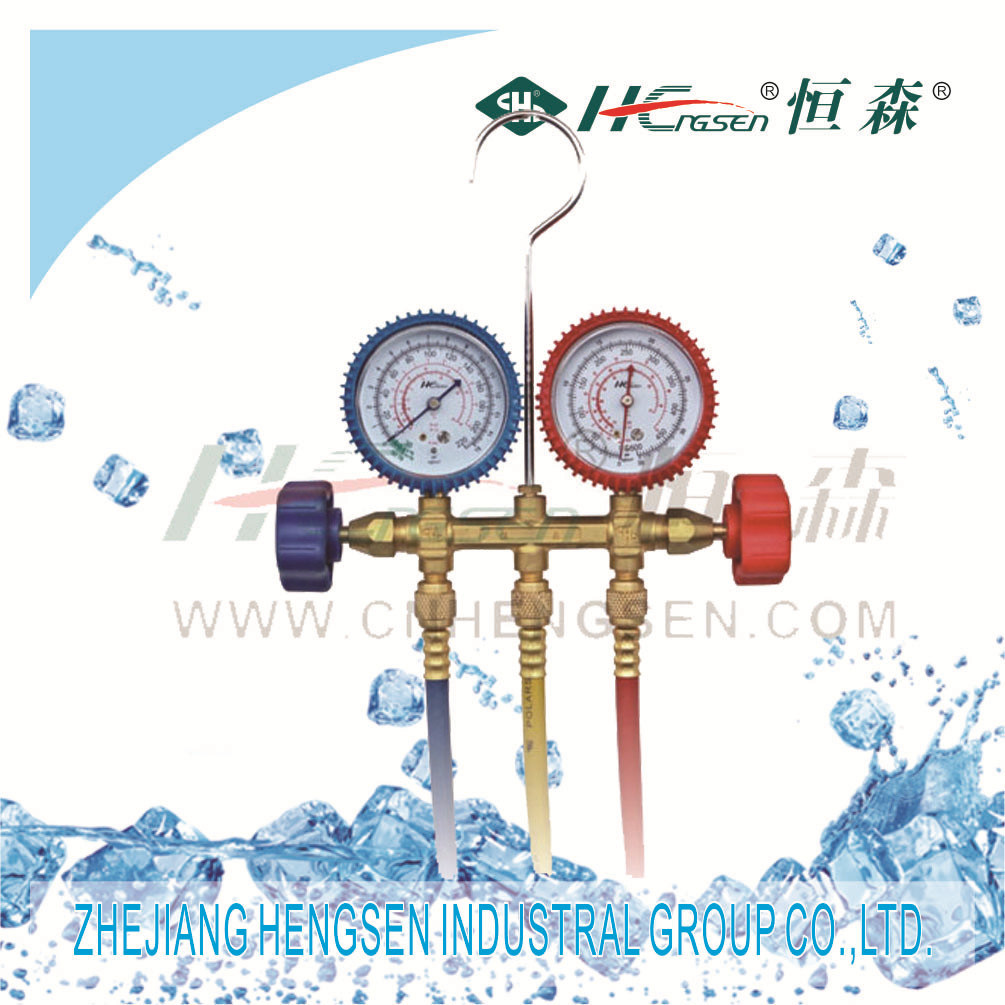 Manifold Gauge Sets With36