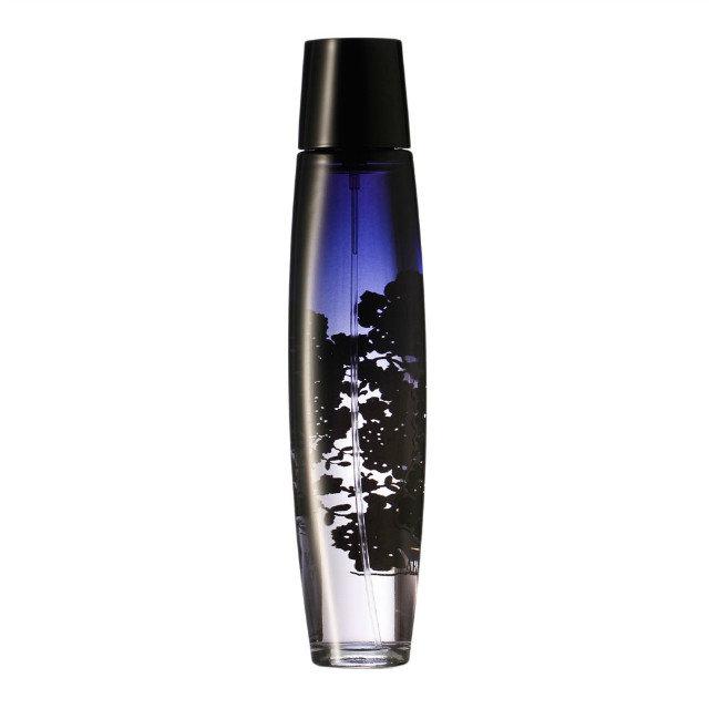 Perfume Bottle Brand Customize with OEM Logo