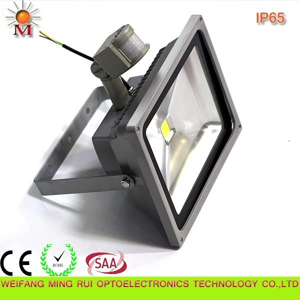 Ce/RoHS/SAA /Water Proof/ 50W LED Flood Light with Motion Sensor