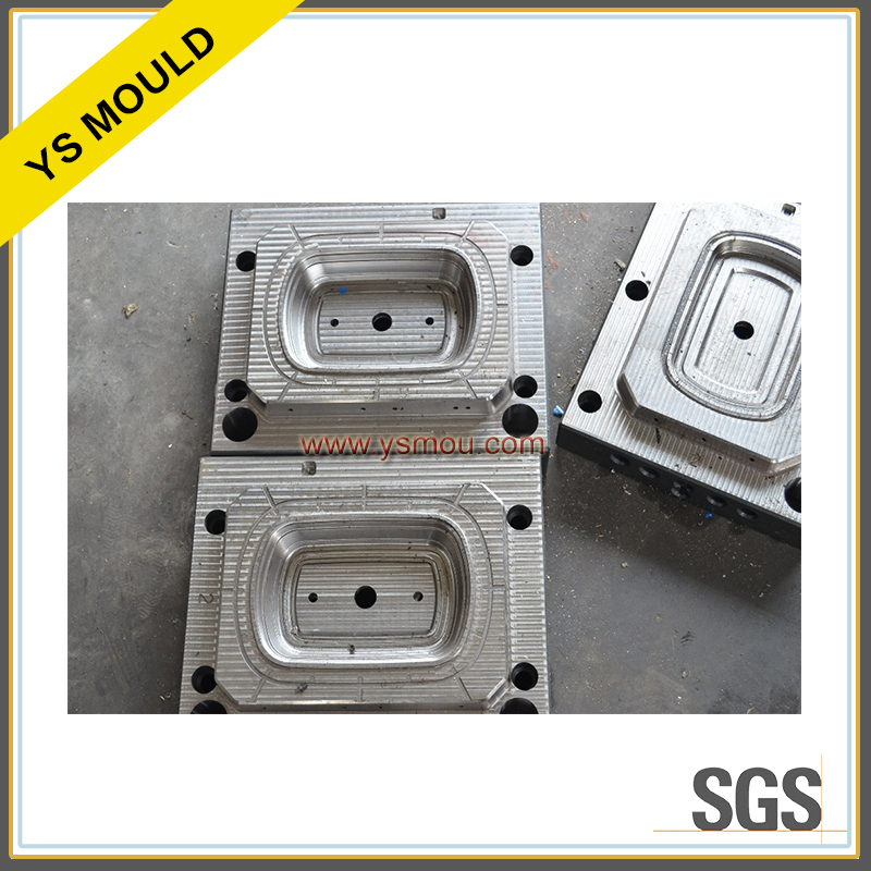 2 Cavity Pet Packing Boxes Mould