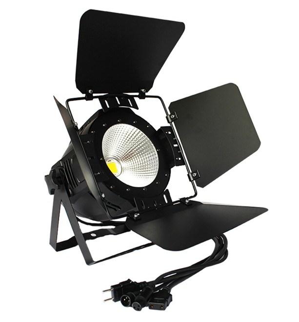 Stage Light 200W COB LED PAR Light for Outdoor Lighting