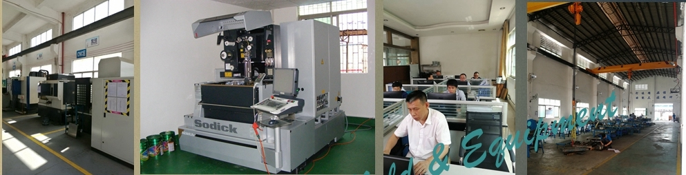 Professional Plastic Injection Mould for Container China Factory