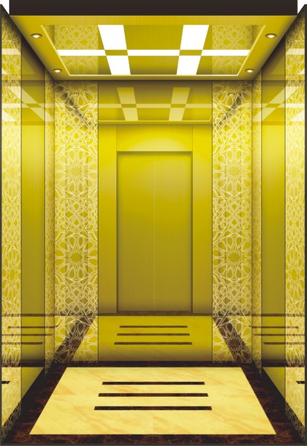 Mrl Space-Saving Passenger Elevator with Luxury Decoration for Hotel