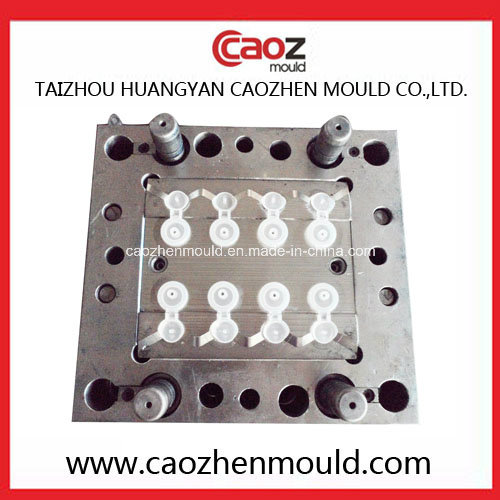 Plastic Injection Flap Cap Mould in China