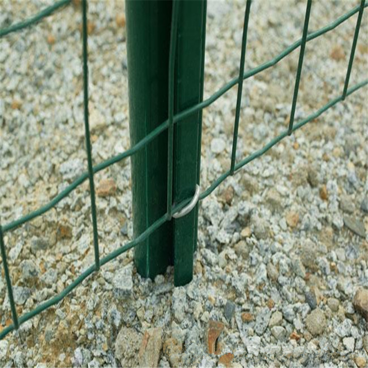 Euro Fence/Holland Wire Mesh Fence