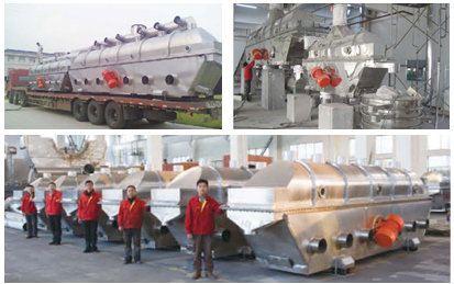 Static Conveyor Fluid Bed Vacuum Drying Machine for Sale