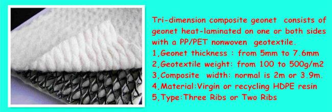 HDPE Tri-Dimension Composite Geonet Fabrinet Geocomposite for Drainage