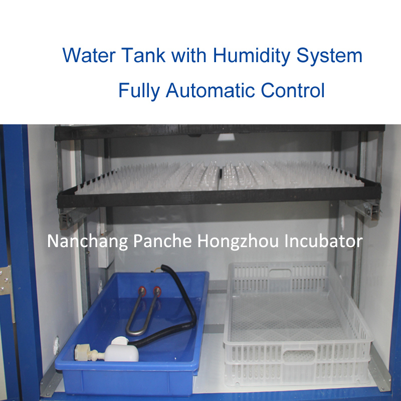Super Solar Energy Microcomputer Parrot Egg Incubator Equipment