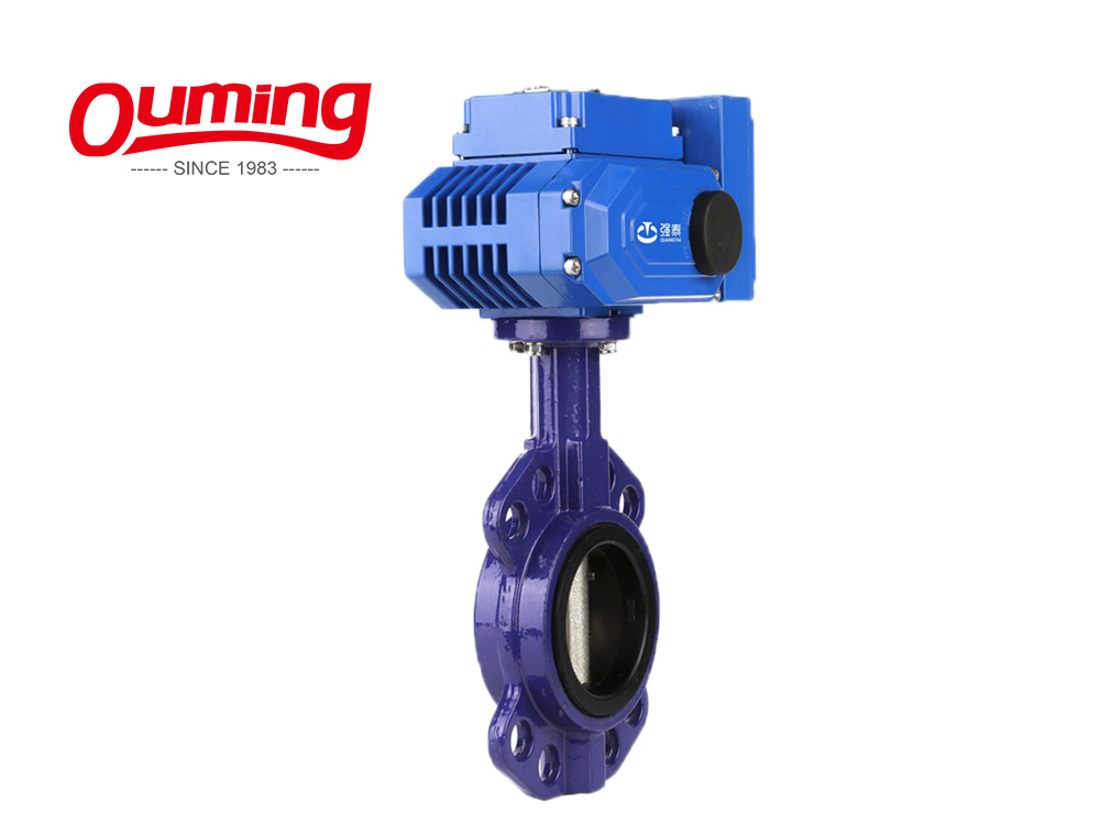 Low Price Pneumatic CF8m Dn100 Butterfly Check Valve
