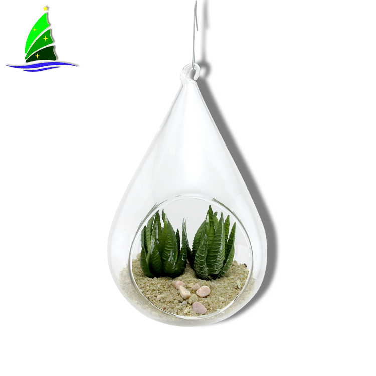 Glass Planter Vases Terrarium